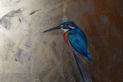 kingfisher by Jackie Morris